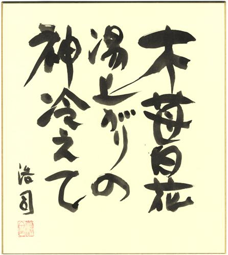 yasui_sikishi_029